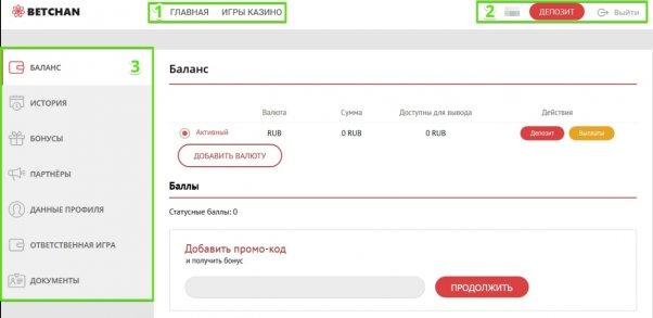 Бетчан аккаунт игрока: элементы интерфейса