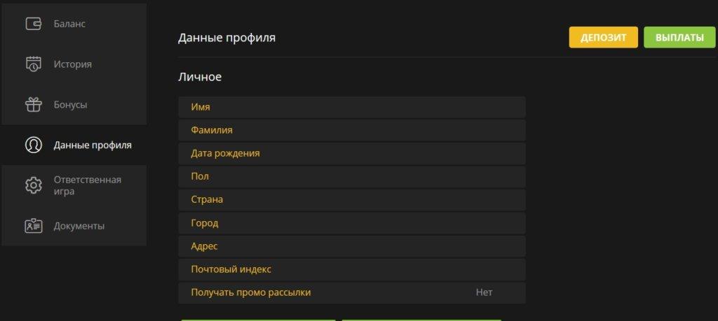 Личный кабинет игрока Фестпей казино - данные профиля