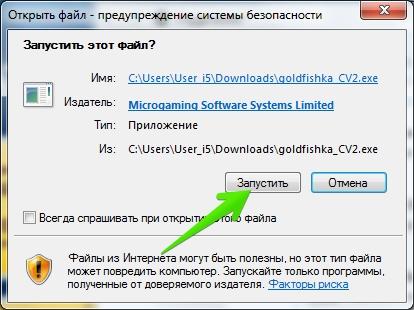 Программа Голдфишка на компьютер: Открытие скаченного файла