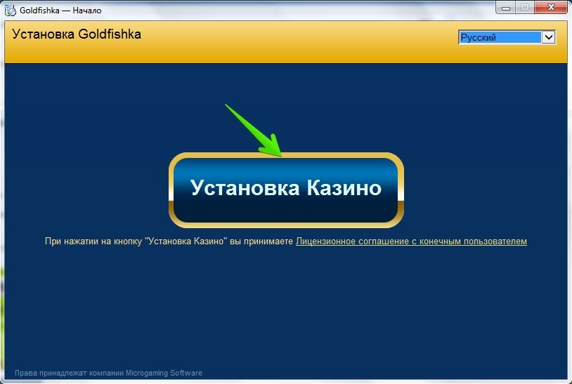 Программа Goldfishka на компьютер: Начало установки