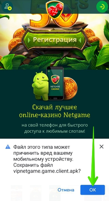 Приложение NetGame на смартфоны: Установка — Шаг 2