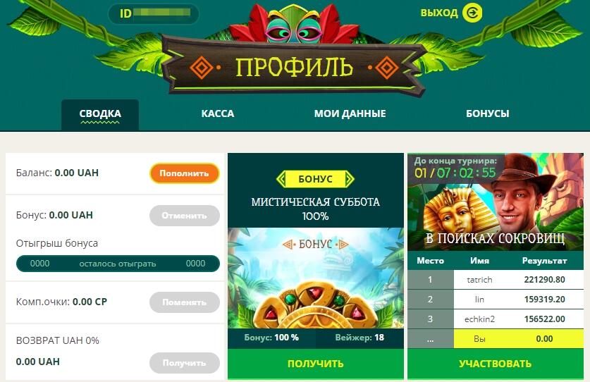 Личный кабинет в казино NetGame: Сводка профиля