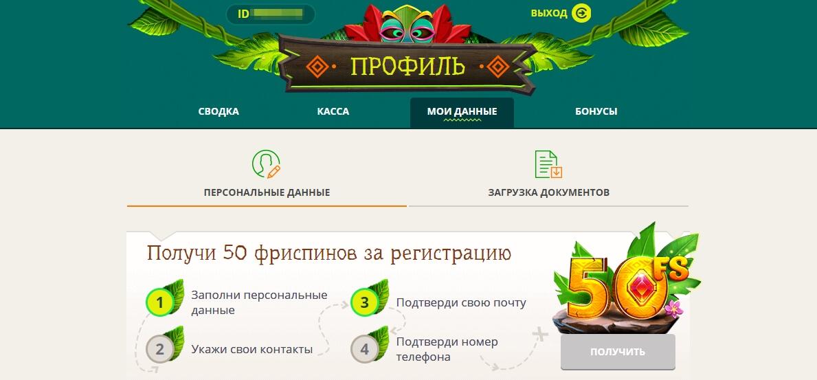 Личный кабинет в казино NetGame: Мои данные